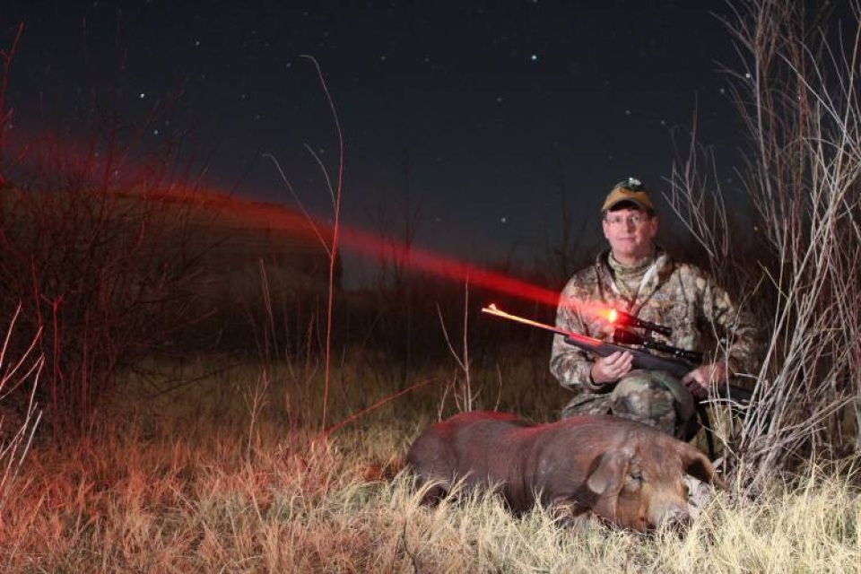 wicked lights w400 predator hog night hunting marksman. Black Bedroom Furniture Sets. Home Design Ideas